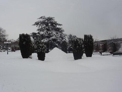 Paysage lunaire aux Jardins du Casino de Montbenon