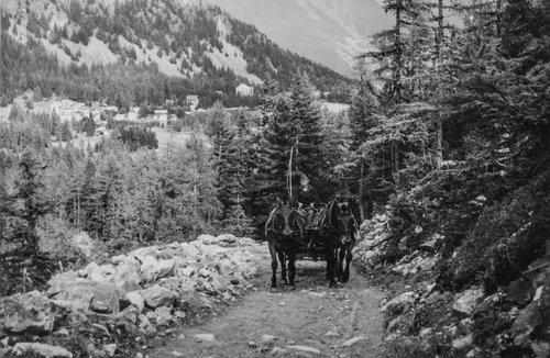 Attelage en route pour le Val d'Arpette