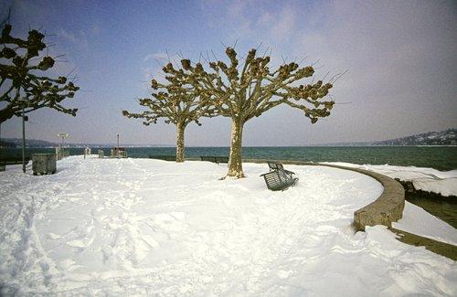 Genève, débarquadère des Eaux-Vives sous la neige