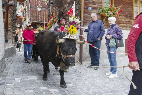Grimentz, ses habitants, ses traditions ...