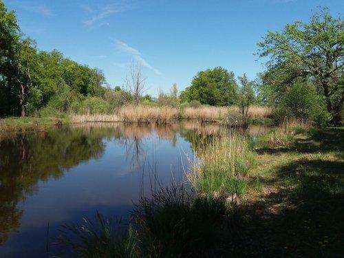 Marais de Mategnin