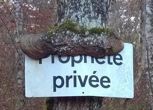 Richelien 3 - Propriété privée
