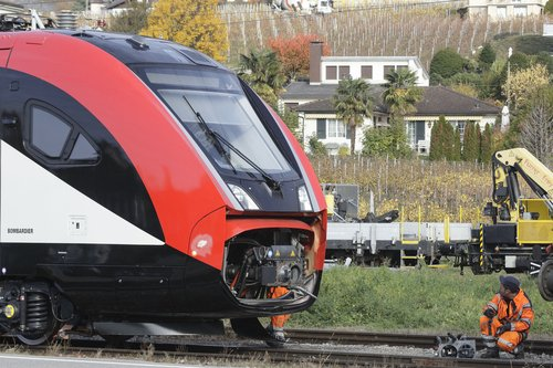 Twindexx Train CFF