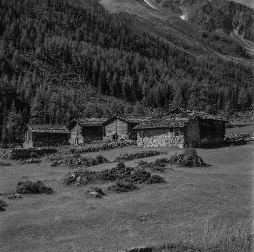 Val d'Arpette les mayens proche du Chalet d'Arpettes  de Cyril Lovey
