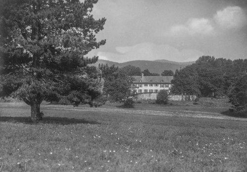 Château de Bonmont, le parc