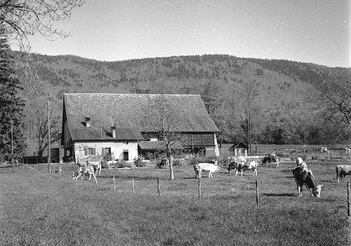 Ferme de Bonmont et Pied du Jura