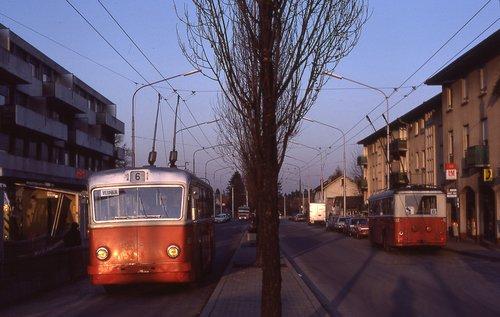 Bus n.6 (TPG) - Route de Vernier - Vernier