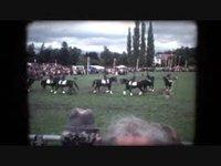 Avenches 1984 Journée du cheval