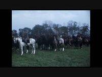 Fin de la cavalerie suisse