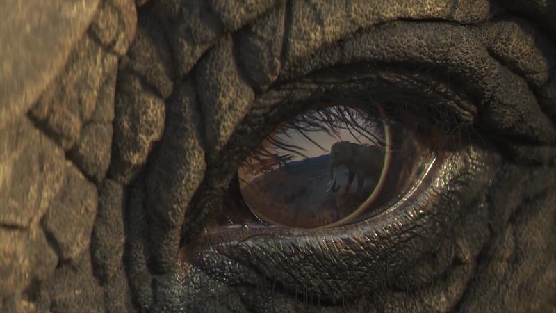 WWF - Minds Eye