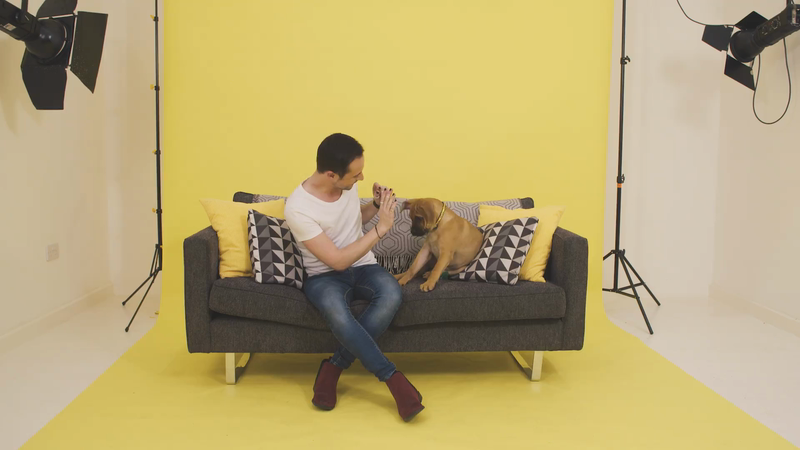 Dogs Trust - Family Pawtraits