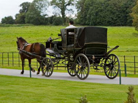Horse and carriage rides at Castlemartyr, Co. Cork