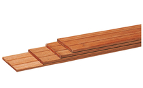 Bangkirai Schuttingplank | 16x145mm | 245cm