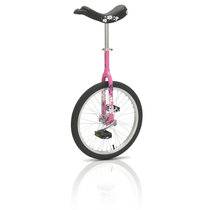 "Kettler |  Pink Flower 20"""
