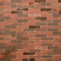 Excluton | Abbeystones Waalformaat 20x5x7 | Rood/zwart