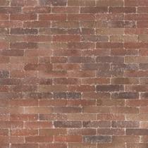 Excluton | Abbeystones Waalformaat 20x5x7 | Bont