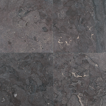 Excluton | Siam Bluestone 60x60x2.5 | Verzoet
