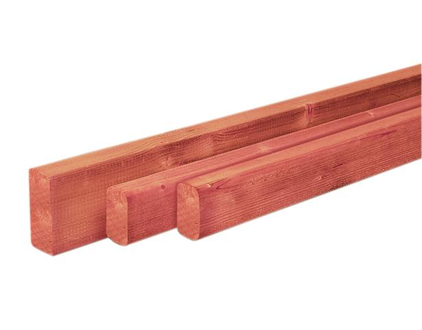 Regel Douglas | 22 x 45 mm | 300cm | Sc.
