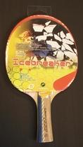Heemskerk-sport | Bat Icebreaker 2 STER