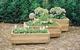 Vuren bloembak | Rechthoek 39 x 100 x 50 cm