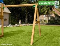 Jungle Gym   2-Swing Module