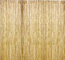 Woodvison | Bamboescherm | 100 x 180