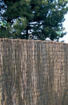 Exterior Living | Ericamat 150x300 cm