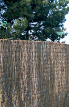 Exterior Living | Ericamat 180x300 cm