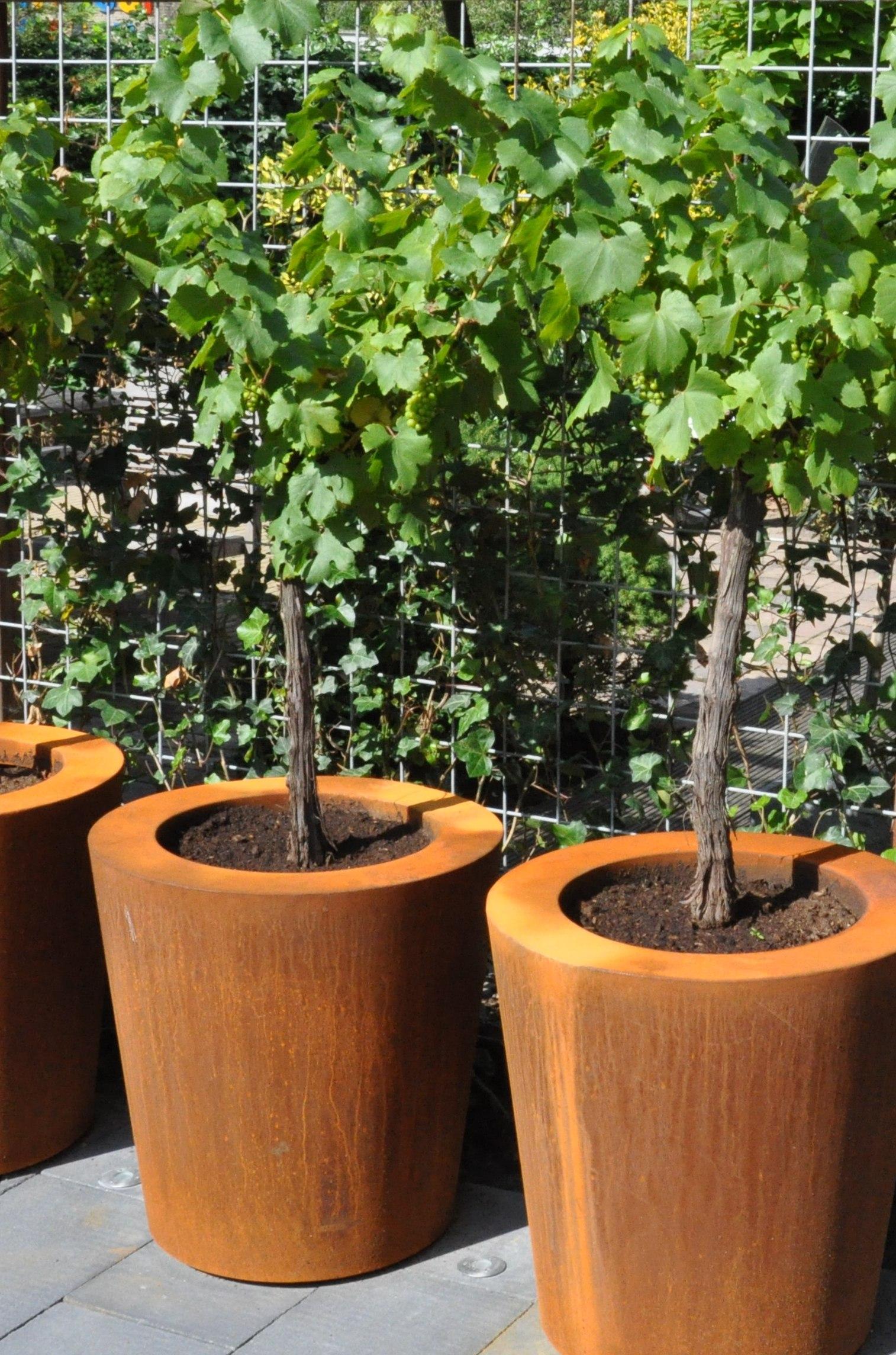 Adezz | Cortenstalen plantenbak Cado | Ø100 x 60 cm