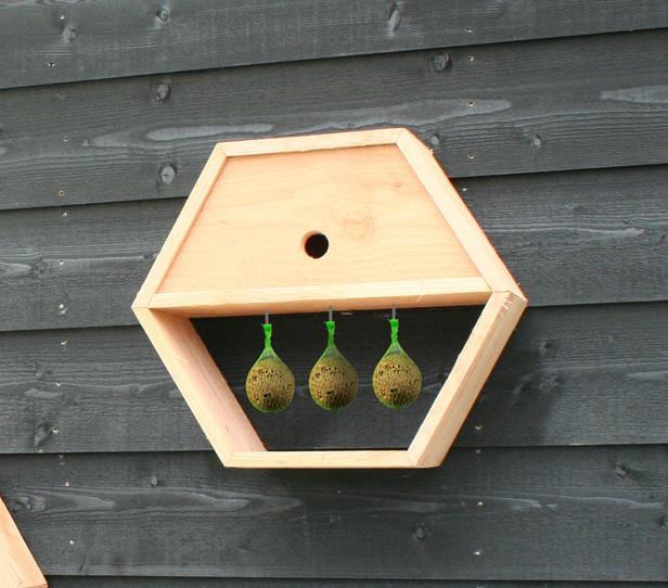 Vogelhuis inbouwpakket   honingraatsysteem