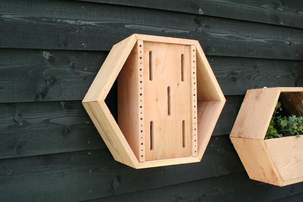 Bijen- en vlinderhotel inbouwpakket | honingraatsysteem