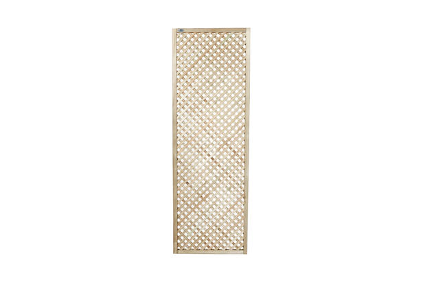 CarpGarant | 14212 | Trellis scherm diagonaal | 180 x 60 cm
