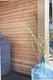 Dubbel Rhombusprofiel Douglas | 28 x 140 mm | 300 cm
