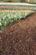 Gardenlux   Franse sierboomschors   Midibag 0.5 m3