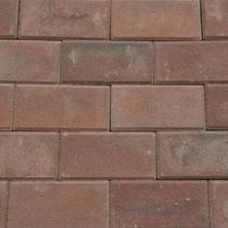 Excluton | Betonstraatsteen 21x10.5x6 | Rood/zwart