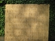 Westwood | Rietplaat Nagy  | 100 x 200 cm