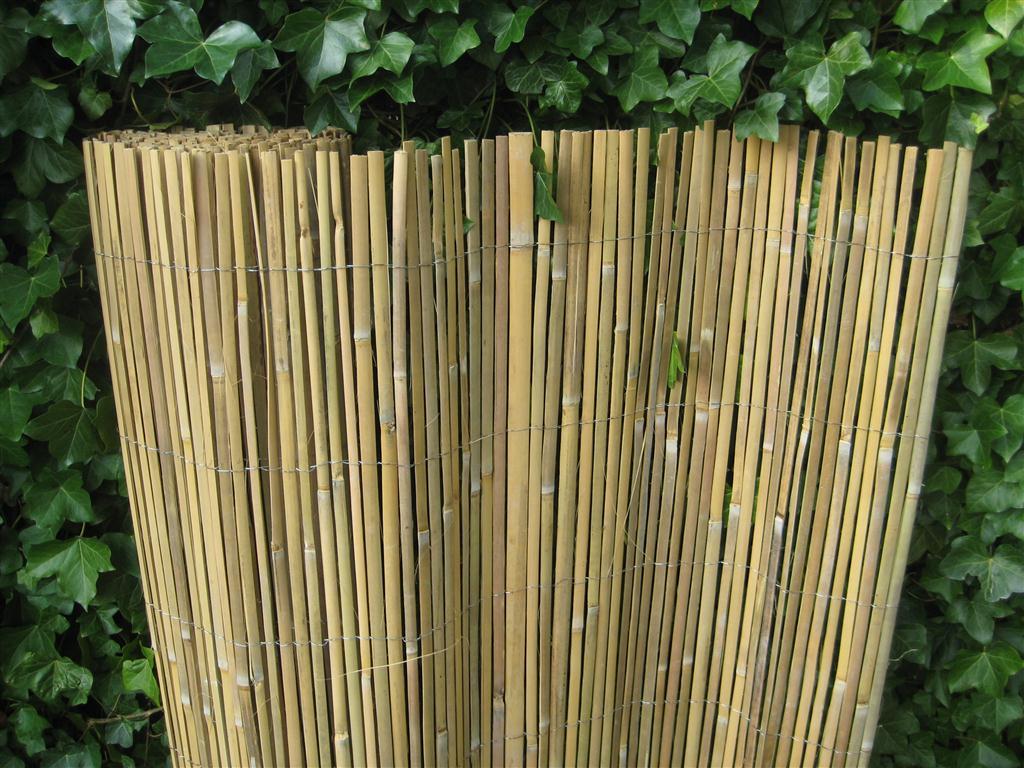 Bamboe Palen Gamma.Westwood Bamboemat Gespleten 100 X 500 Cm