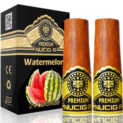 A Electric rechargeable cigar filter pack - WATERMELON
