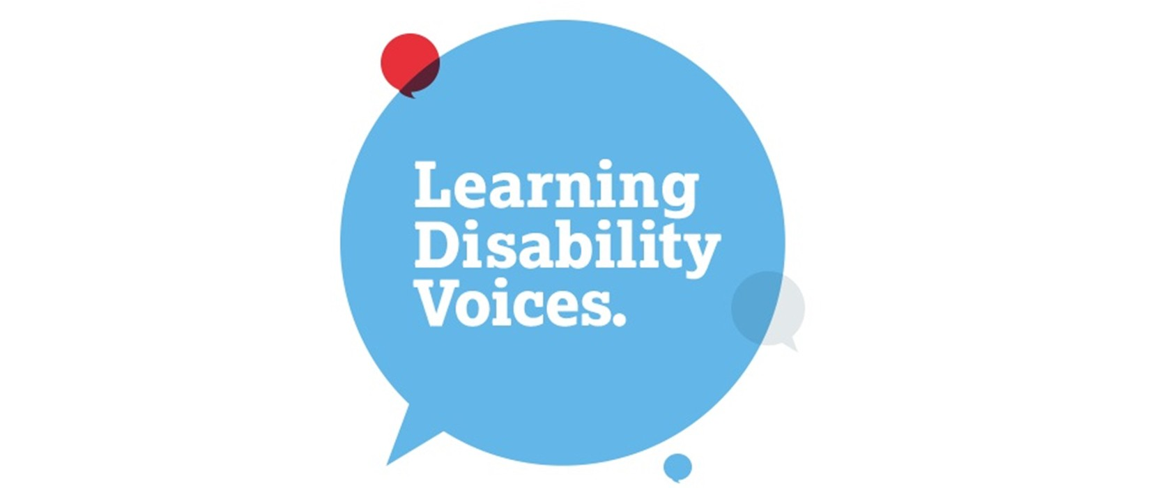 Learning Disability Voices response to the Spring 2017 Budget