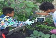 Volunteers rafael and eliy weeding the plot400