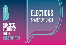 Elections web