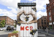 Mcr bee we love