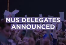 Nus delegates article