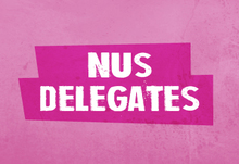 Nus delegates vote webpage banner 02