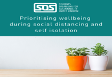 Wellbeing article image 4