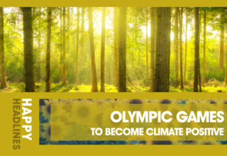 2020   article   happy headlines   1   olympic forest 01