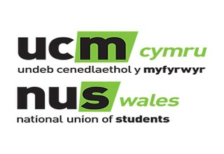 Connect nus wales bilingual 300x300