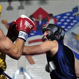 Boxers 1919379 1280sq