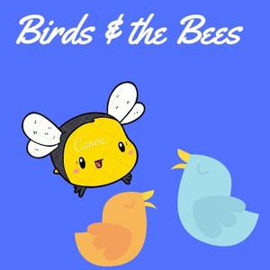 Birds   the bees