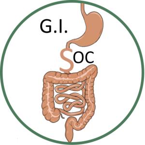 G.i. soc logo